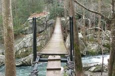 bridge21543662